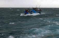 Quảng Ngãi: Kịp thời cứu sống 3 ngư dân bị chìm tàu trên biển