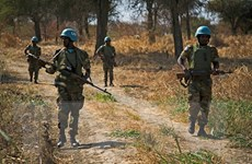 Hội đồng Bảo an Liên hợp quốc thông qua Nghị quyết gia hạn UNISFA