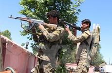 Quân đội Afghanistan tiêu diệt 21 tay súng của Taliban