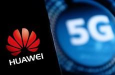 Chính phủ Anh cân nhắc loại bỏ Huawei khỏi hệ thống mạng 5G