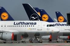 Đức tạm thời quốc hữu hóa một phần hãng hàng không Lufthansa