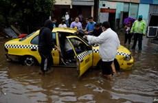 Bão nhiệt đới Amanda hoành hành tại El Salvador và Guatemala
