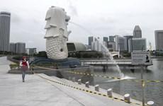 Tình hình COVID-19 ở Đông Nam Á: Singapore mở cửa lại trường học