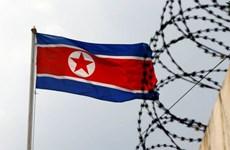 Triều Tiên không trả lời qua đường dây nóng quân sự liên Triều