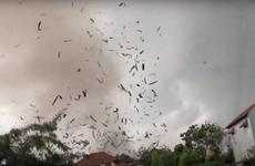 Vĩnh Phúc: Gió lốc mạnh khiến 3 người chết, khoảng 20 người bị thương