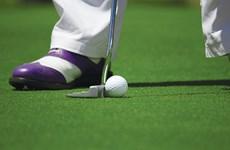 Phê duyệt chủ trương đầu tư ba sân golf ở Bắc Giang, Hòa Bình