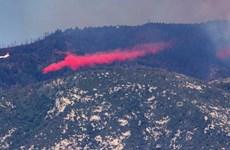 Mỹ: Hàng nghìn người sơ tán do cháy rừng lan rộng tại Arizona