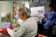 Brazil, Trung Quốc thử nghiệm lâm sàng vắcxin phòng COVID-19