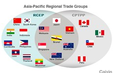 Viện Peterson: CPTPP và RCEP giúp hội tụ các nền kinh tế châu Á