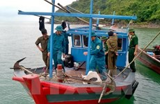 Doanh nghiệp độc quyền khiến bảo hiểm tàu cá bị hạn chế?