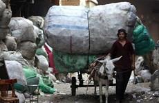 Bất ổn khiến GDP của Ai Cập giảm xuống mức 1%