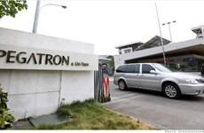 Pegatron mở nhà máy mới để sản xuất hàng loạt iPhone 6