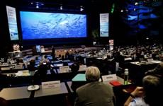 Đại dương có vai trò quan trọng với an ninh lương thực