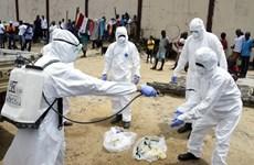 Hàn Quốc sẽ cử đoàn hỗ trợ y tế tới Tây Phi để chống dịch Ebola