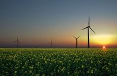 Mỹ và Trung Quốc thúc đẩy hợp tác trong lĩnh vực năng lượng sạch