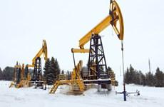 Sản lượng dầu của Nga năm 2015 ở mức hơn 10 triệu thùng mỗi ngày