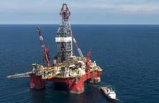 Giá dầu tiếp tục giảm, OPEC sẵn sàng chấp nhận mức giá dưới 40 USD