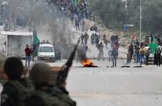 Cách tiếp cận mới của EU với tiến trình hòa bình Israel-Palestine