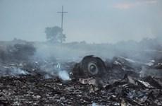 2014 - Một năm nhiều thảm họa đối với hàng không thế giới