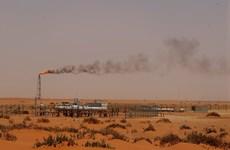 Bộ trưởng Năng lượng UAE: OPEC không thể ngăn được giá dầu giảm