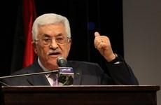 Palestine có thể bãi đơn kiện Israel lên Tòa án Hình sự Quốc tế