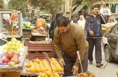 Kinh tế Ai Cập dự kiến tăng trưởng 2,9% trong tài khóa 2015