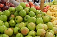 Indonesia cấm bán táo nhập khẩu từ Mỹ do lo ngại vi khuẩn
