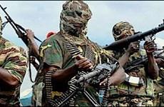 Quân đội Cameroon tiêu diệt 300 phiến quân Boko Haram