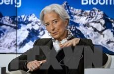 IMF kêu gọi G20 hành động để thúc đẩy kinh tế toàn cầu