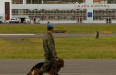 Bồ Đào Nha-Mỹ bất đồng về cắt giảm nhân viên ở căn cứ quân sự