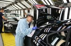 Eurozone: Chỉ số PMI tăng lên mức cao nhất kể từ tháng 5/2011