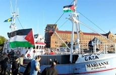 Israel trục xuất nghị sỹ nghị viện châu Âu do tìm cách vào Dải Gaza