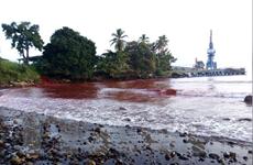 Hàng trăm nghìn lít bùn độc hại tràn ra biển ở Papua New Guinea