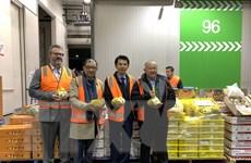 Lần đầu tiên nhãn tươi Việt Nam xuất hiện tại thị trường Australia