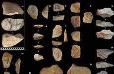Người cổ đại tái chế các công cụ cách đây 500.000 năm