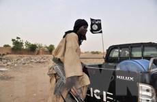 Tranh cãi về dự luật tước quốc tịch nghi phạm khủng bố của Australia
