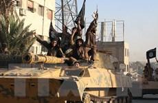 Quân đội Syria phát hiện căn cứ lớn của phiến quân trong một hang động