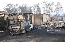 Cháy rừng diễn biến phức tạp, gây nhiều thiệt hại ở Australia