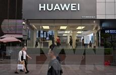 Huawei hứng chịu khoảng 1 triệu cuộc tấn công mạng mỗi ngày