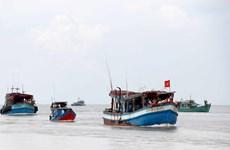 Nhiều chủ tàu cá mất khả năng trả nợ do hoạt động không hiệu quả