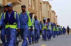 Qatar chấm dứt các hạn chế liên quan đến lao động nhập cư