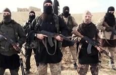 An ninh Iraq bắt giữ nhiều phiến quân IS chạy trốn khỏi Syria