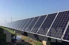 IEA: Công suất năng lượng tái tạo toàn cầu sẽ tăng 50% trong 5 năm tới