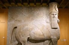 Phục dựng bức tượng Lamassu nối tiếng từng bị IS phá hủy tại Iraq