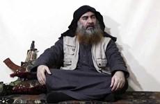 Thủ lĩnh IS Baghdadi đã khóc lóc trước khi kích hoạt áo cài bom tự sát