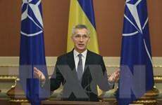 Tổ chức Hiệp ước Bắc Đại Tây Dương để ngỏ cửa kết nạp Ukraine