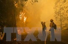 Mỹ: Bùng phát các đám cháy rừng mới ở bang California