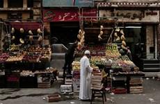 Kinh tế Ai Cập tăng trưởng 5,6% trong tài khóa 2018-2019