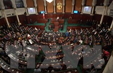 Tunisia: Đảng Hồi giáo giành chiến thắng trong cuộc bầu cử quốc hội