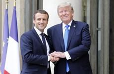 Tổng thống Pháp và Mỹ sẽ gặp nhau bên lề Hội nghị thượng đỉnh NATO